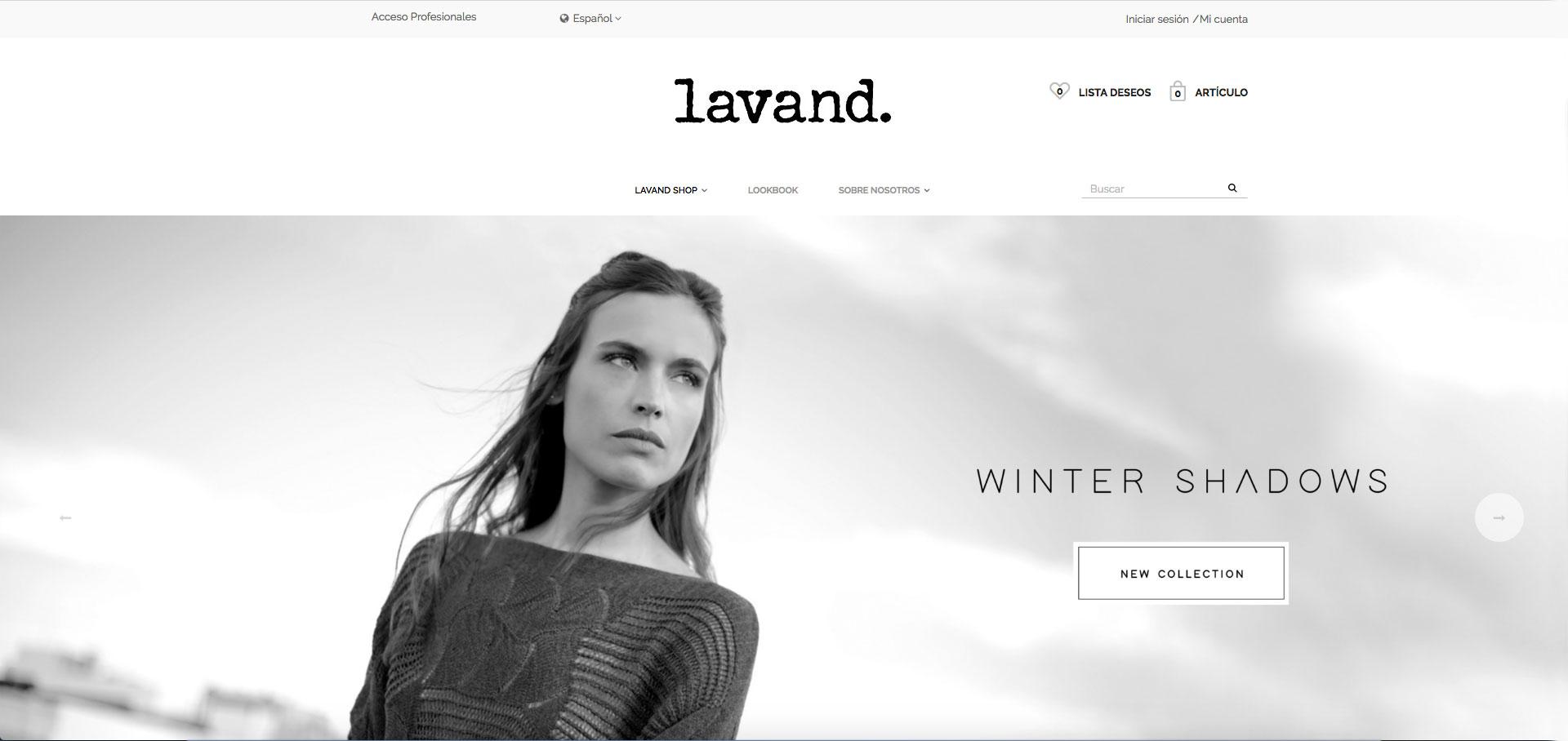 proyecto_lavand